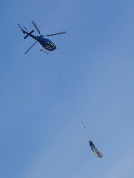 Vliegende ijsberen -- verdoofde dieren worden in netten weggevoerd per helikopter.