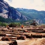 Houtindustrie in de Canadese provincie British Columbia,
